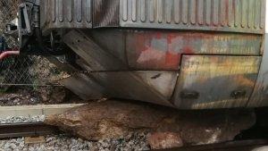 La circulació de trens ha quedat interrompuda entre els municipis de Figaró i Sant Martí de Centelles pel despreniment