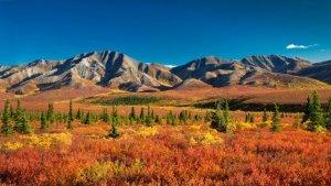 El paisatge de la tundra al nord d'Europa, sota hi ha congelat grans reserves de metà i CO2