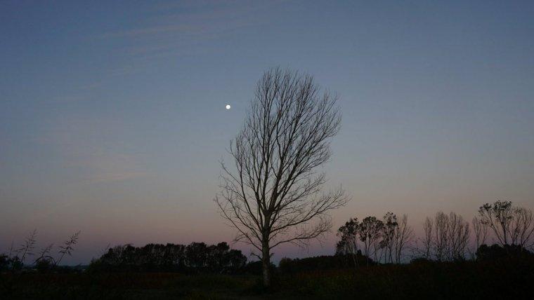 Cielos generalmente despejados y temperaturas frescas estas próximas jornadas