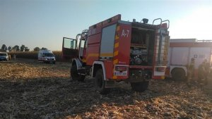 Efectivos de los bomberos y Cruz Roja en el incendio de la cosecha de Rincón de Caya, Badajoz