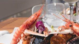 El Restaurant Brisa de Tamarit servirà el menú del programa MasterChef Celebrity