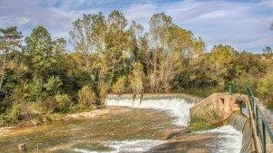 Els rius han recuperat un bon cabal gràcies a les pluges
