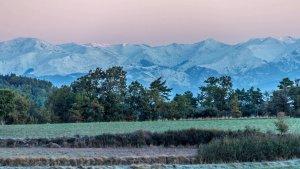 Gebrada al Moianès amb el Pirineu nevat al fons