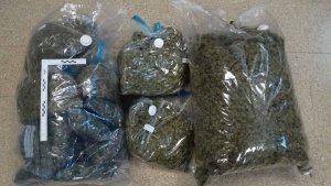 Imatge de les bosses de marihuana confiscades pels Mossos i valorades en 21.000 euros