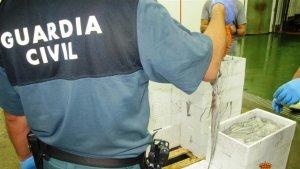 La Guàrdia Civil confisca 270 quilos de polp de roca immadur