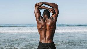 La síntesis de proteínas es esencial para la formación y mantenimiento de huesos, músculos, tendones y cartílagos.