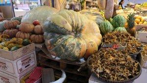 Les carabasses immenses de la parda Cal Pere al Mercat de Reus