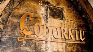 Llum verda per la venda de Codorniu a un fons inversor americà