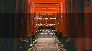 Poemas haiku o cómo captar la belleza en pocas palabras.