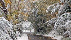 Se esperan algunas nevadas débiles este viernes en cotas elevadas de las montañas norteñas