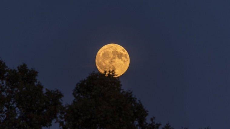 A las 18.45 de hoy miércoles, la luna será completamente llena