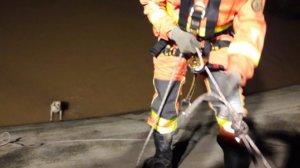 Bombers rescaten a un gos que havia caigut al riu Magre a Algemesí