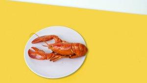 El marisco y la carne de caza suelen ser los alimentos más ricos en purinas.