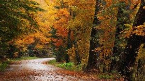 El novembre podria ser plujós en alguns punts