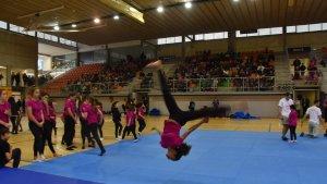 El pavelló Sant Jordi, ple durant una de les exhibicions que es van fer a la Festa de l'Esport.
