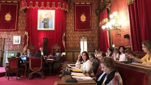 El plenari s'ha reunit en sessió ordinària aquest divendres, 16 de novembre.