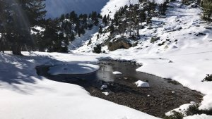 La neu al Pirineu podria reduir-se fins a un 50% a mitjans de segle