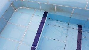 La piscina municipal de Sant Pere i Sant Pau té les parets brutes i floridures.