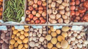 Cada uno de los diferentes grupos de alimentos nos aportan beneficios específicos.