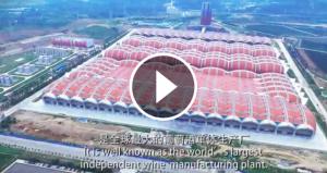 Changyu a Yantai, el celler més gran de la Xina