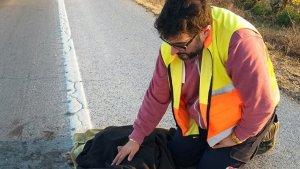 El jove es va aturar en veure el gos ferit a la carretera.
