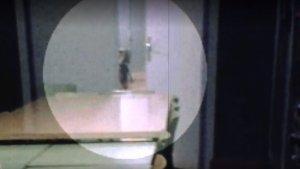 La criatura observava a l'autora de la fotografia des de la porta