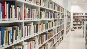 La Policia Nacional deté a un home per no retornar més de 200 llibres d'una biblioteca de València