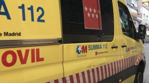 Un hombre de 74 años muere tras caer de un árbol en Móstoles, Madrid