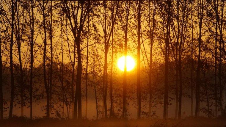 El vent de tramuntana i mestral retorna als extrems del país aquest divendres, però el matí tornarà a ser emboirat