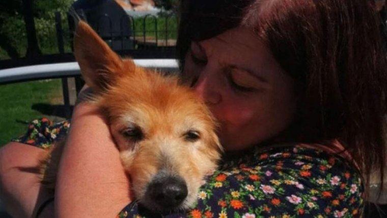 La història del gos Pincho ha acabat amb final feliç
