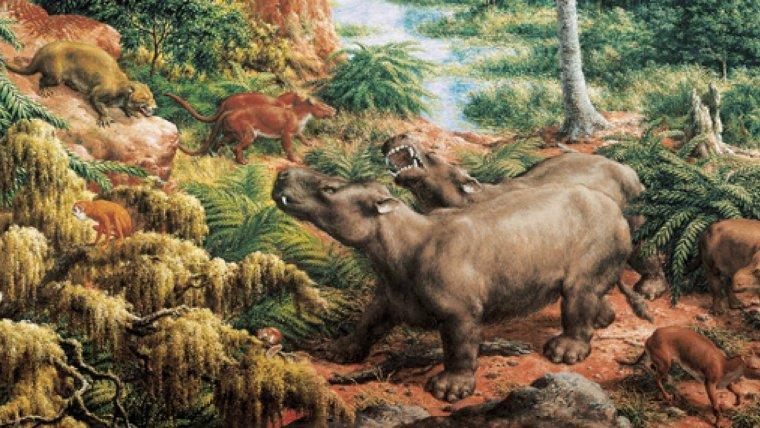 La Terra pot tornar en un segle al clima del període de l'Eocè