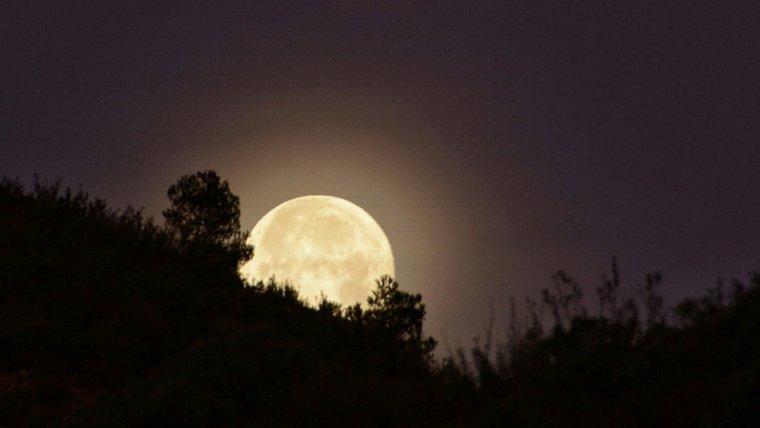 La visió de la lluna ha estat espectacular aquestes últimes hores