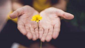 Cartas para pedir perdón y mostrar tu arrepentimiento.