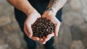 Diez beneficios del café para el organismo.