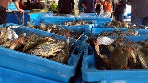 Els pescadors de la Ràpita capturen més d'una tona diària de cranc blau durant aquest mes de gener