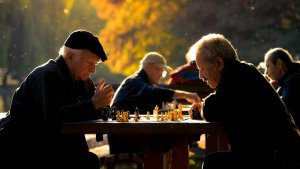 Howard Gardner describió 8 tipos de inteligencia, pero existen otros distintos
