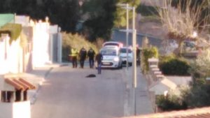 Imatge del moment posterior en què l'agent ha disparat el gos.