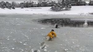 Imatge del rescat del gos atrapat en un llac gelat a Colorado