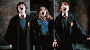 Los usuarios podrán ver desde la primera película, 'Harry Potter y la piedra filosofal', hasta la última, la segunda parte de 'Las reliquias de la muerte'