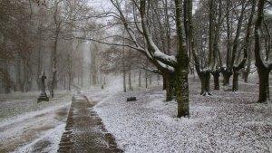 Nieve fina de la mañana del jueves en Urkiola, País Vasco