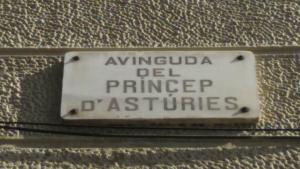 Actual placa de l'avinguda, que serà modificada el 24 de març