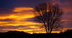 Aquesta propera matinada tornarà a ser molt rogenca i més freda a forces punts del nord