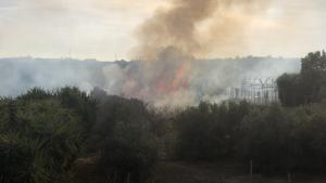 El foc ha començat a un canyissar i ha passat a una tenda de jardinería de Constantí.