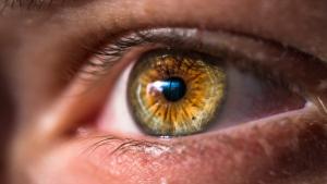 El nistagmo o nistagmus es una afección que afecta al movimiento involuntario de los ojos.