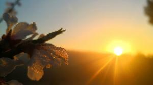 El sol i el temps anticiclònic continuaran aquest divendres