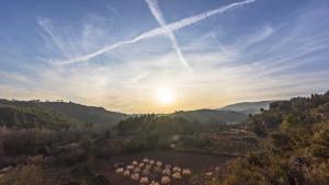 Este viernes volverán a predominar las estelas de condensación de los aviones y las nubes altas, y nubes más gruesas en Galicia