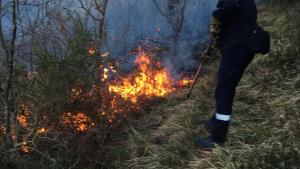 Incendio forestal en Goizueta, Navarra