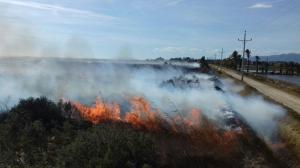 Les flames han afectat un camp ple de vegetació a la zona de la Platjola, a Sant Jaume d'Enveja