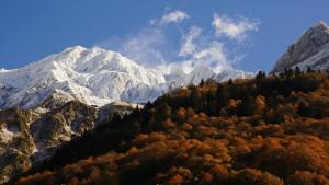 Transició entre el paisatge de tardor i hivern al Pirineu