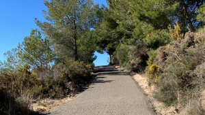 Un tram del camí asfaltat.